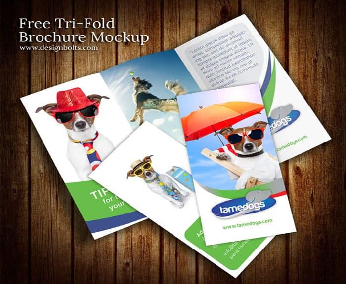 Tri Fold Brochure Templates 14.4