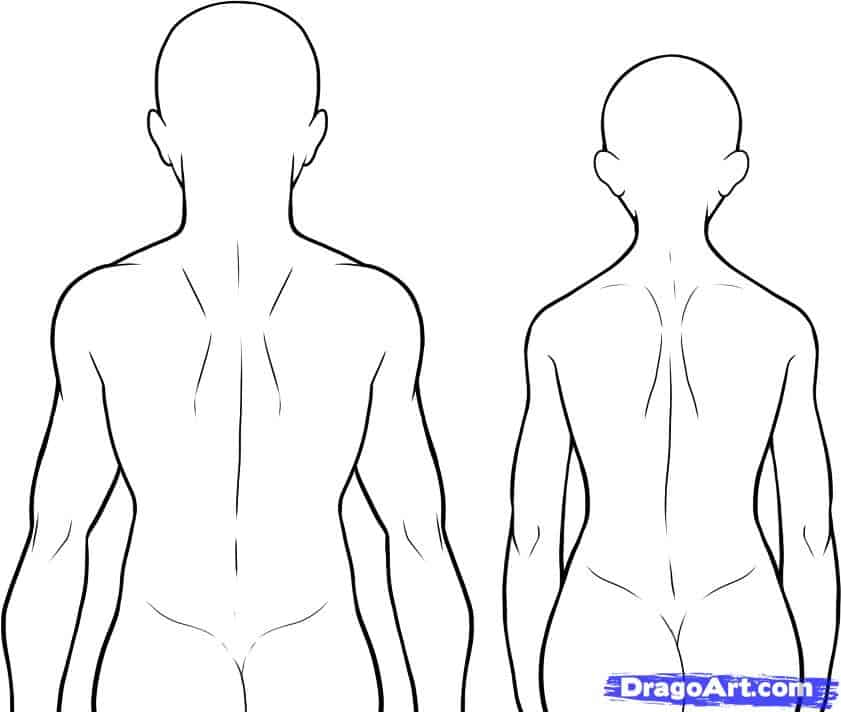 human body outline 6461