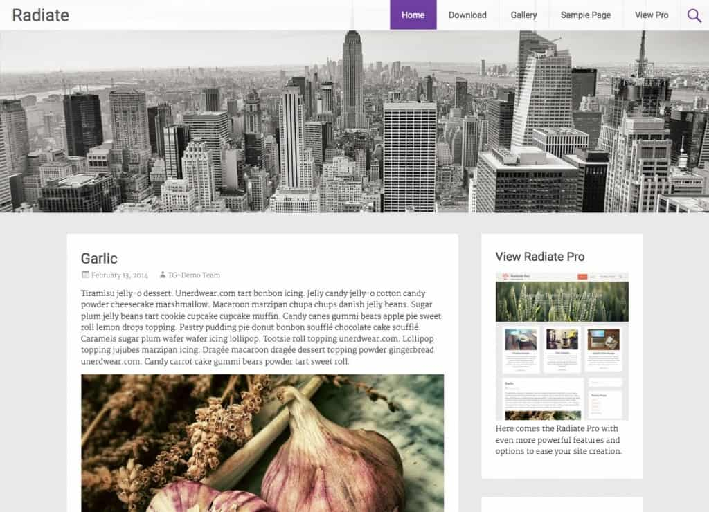 Free WordPress Themes For Tech Blog 3641