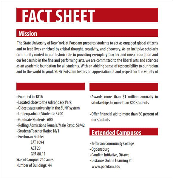 fact sheet template 241