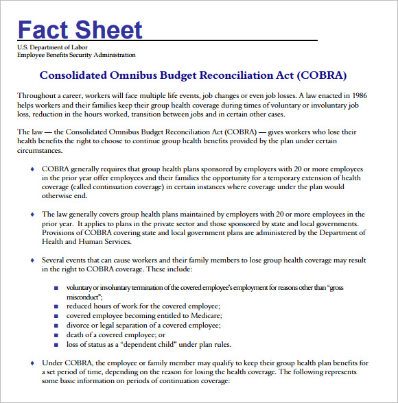 fact sheet template 36
