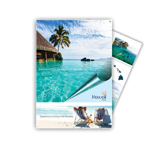 travel flyer 770