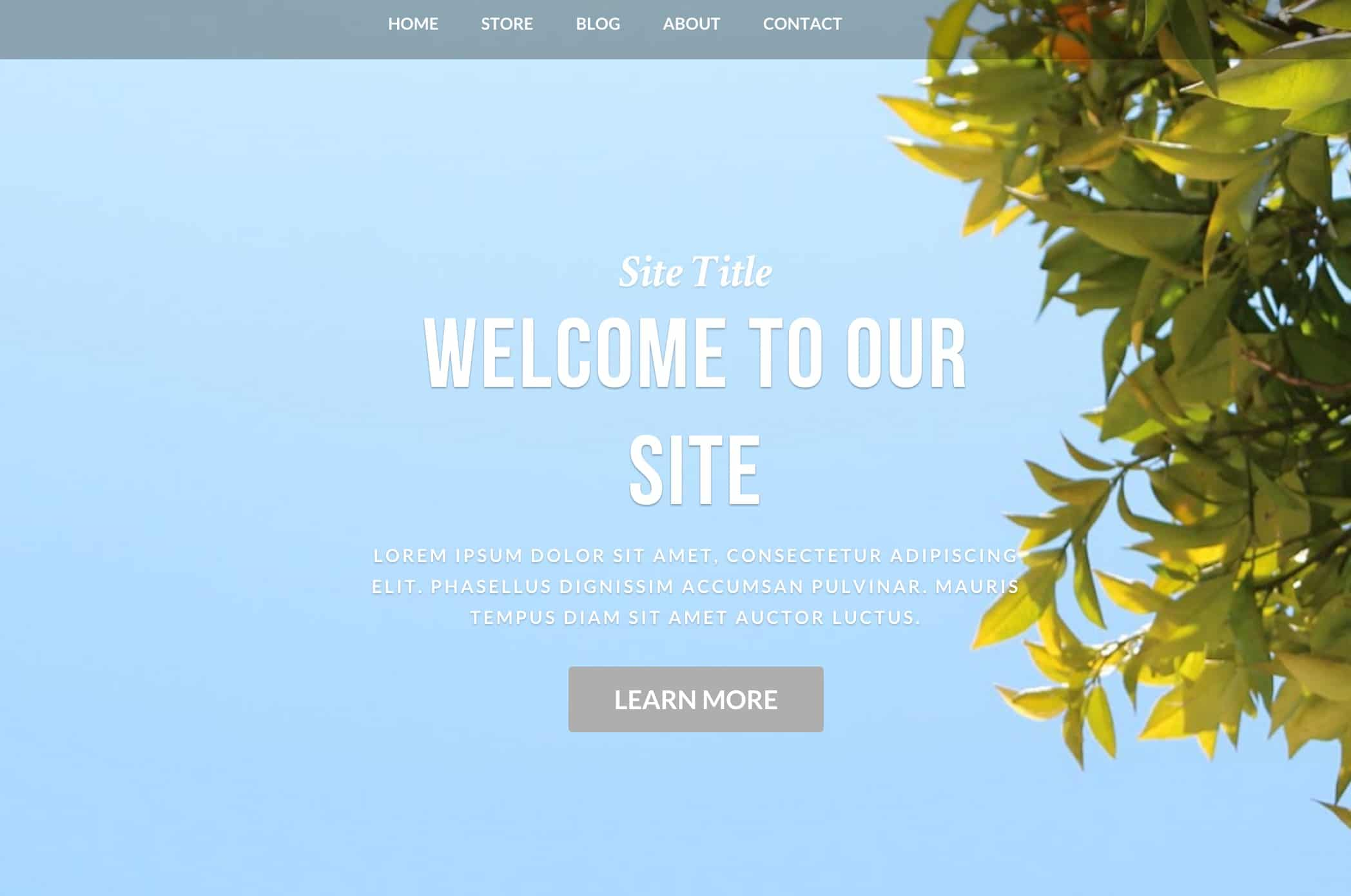 6 weebly themes download website wordpress blog for Free weebly themes and templates