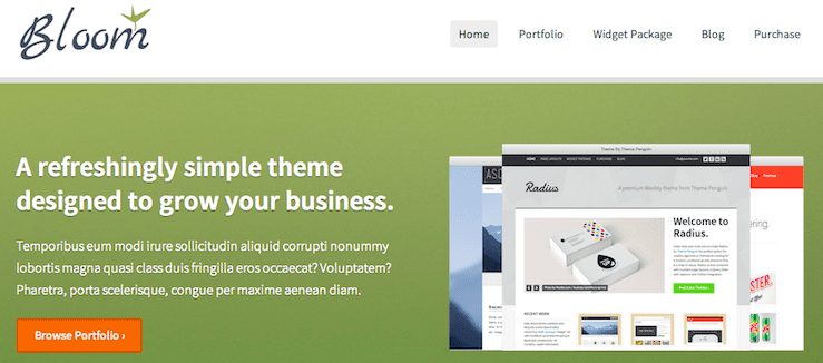 weebly themes 346