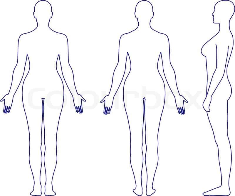 Human Body Outline 5641 Templates Front