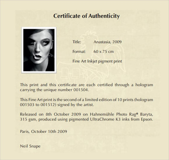 Art Certificate Of Authenticity Template from www.templatesfront.com