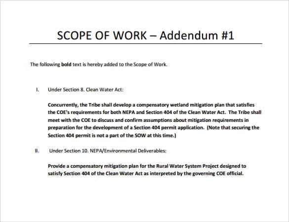 scope of work template 990